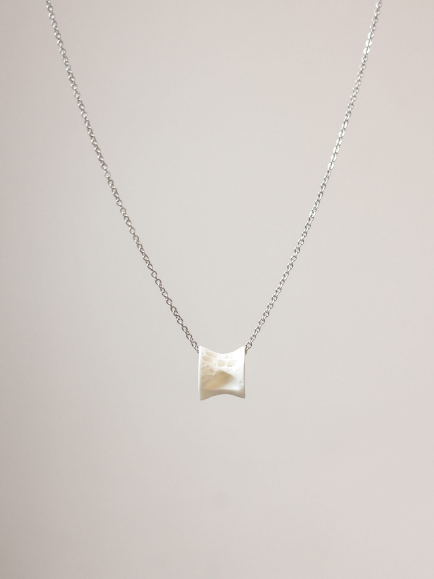 Fish Bone Vertebrae Necklace (Type A)