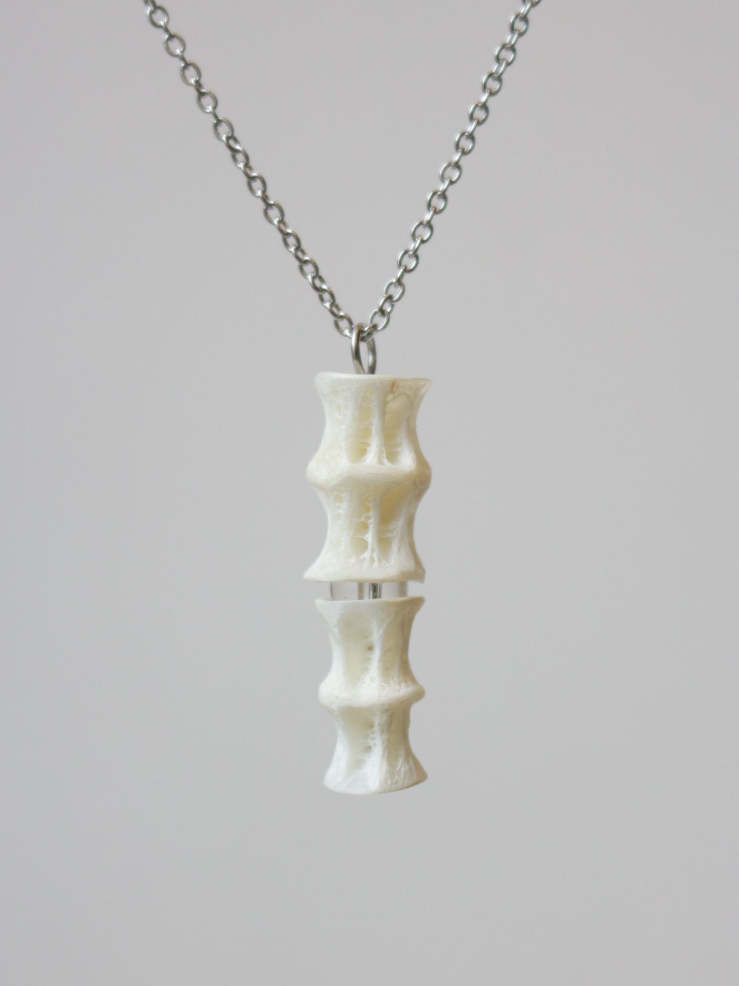 Fish Bone Vertebrae Necklace (Type D)